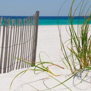 FAQs | Life Counseling Florida | North Palm Beach, FL 33408